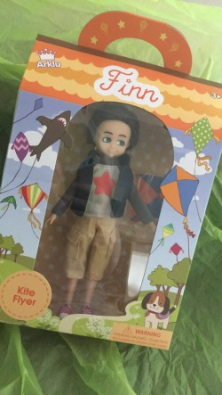 IMG_finn boxed doll